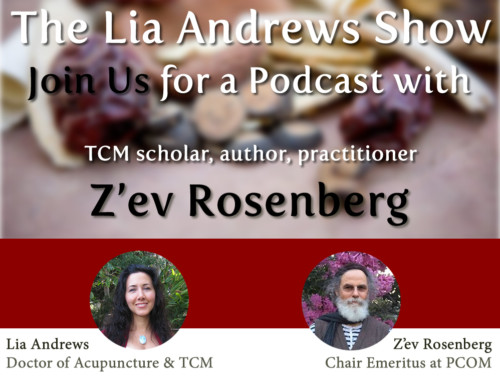 Podcast Episode 3: Interview with Z'ev Rosenberg