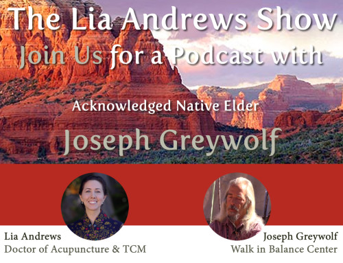 Podcast Episode 4; Interview with Joseph Greywolf