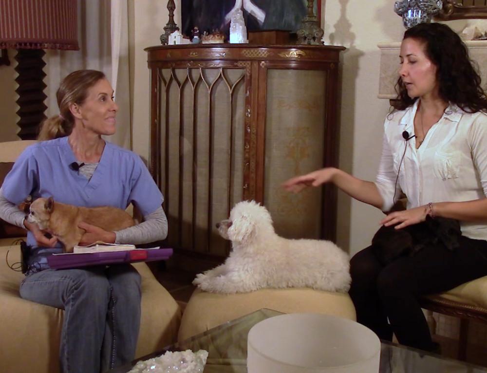 Episode 7; Animal Communicator Poppy Phillips Talks With Dogs