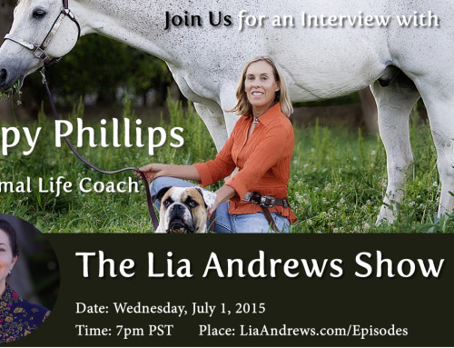 Podcast 6; Animal Communicator Poppy Phillips Talks With Horses
