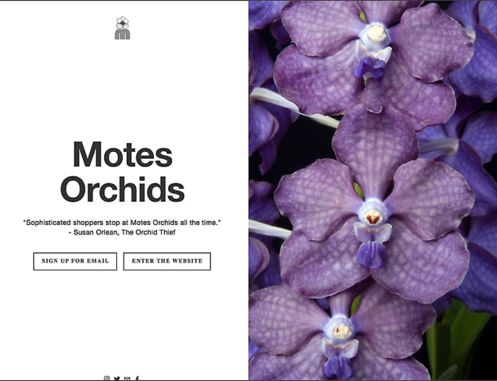 Martin Motes on Growing Orchids in South Florida