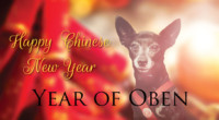 Chinese New Year 2018 Year of the Earth Dog
