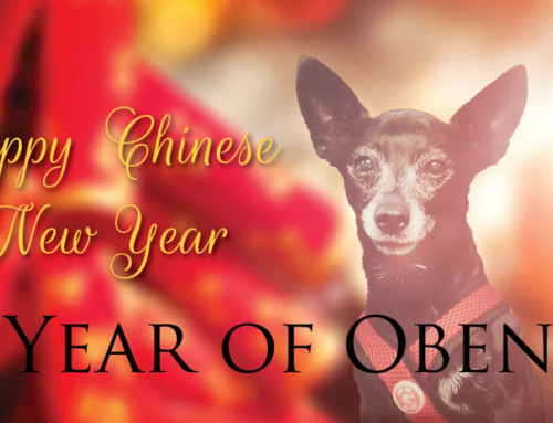 Chinese New Year 2018 – Year of the Yang Earth Dog